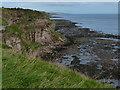 NT9955 : Cliffs near St John's Haven by Mat Fascione
