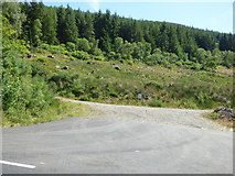 NS0682 : Forest road off the B836 road by Thomas Nugent