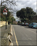 TQ3370 : Top of Fox Hill, Upper Norwood, south London by Robin Stott