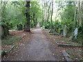 TQ2886 : Path in Highgate Cemetery East by Marathon