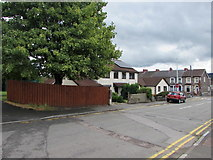 ST1888 : Tree and houses, Navigation Street, Trethomas by Jaggery