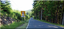 NS1281 : Adverse Camber sign on the B836 road by Thomas Nugent