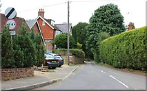 SU8123 : Fyning Lane by David Howard