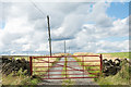 NZ0645 : Access to Red House beyond red gate by Trevor Littlewood