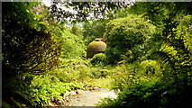 SX4268 : Lower garden at Cotehele by Jonathan Billinger