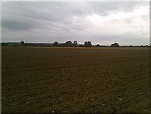 SE7576 : The Ings near Great Habton by Jonathan Clitheroe