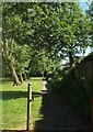 SE2953 : Path through park, Harrogate by Derek Harper
