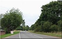 SU7823 : The A272, Durleighmarsh by David Howard