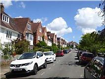 SX9193 : Velwell Road, Exeter by David Smith