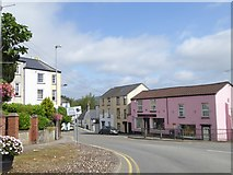 ST5393 : The Pink House, Hardwick Terrace, Chepstow by David Smith