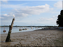 TM2844 : Waldringfield: low tide on an August afternoon by John Sutton