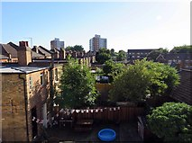 TQ2789 : Gardens to rear of houses on Kitchener Road by Andrew Tatlow