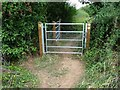 SO8641 : New footpath gates by Philip Halling