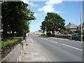 NZ4062 : Mill Lane, Whitburn by JThomas