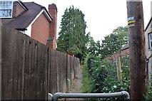 SU4360 : Narrow path in Highclere by David Howard