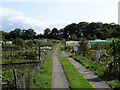 SK5426 : East Leake Allotments by Ian Calderwood