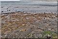 NZ8613 : Mysterious holes at Sandsend Ness by Mick Garratt