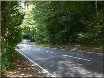 TQ2652 : Minor road south of the M25 by Stefan Czapski