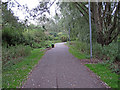 TL7108 : Path in Chelmer Valley Local Nature Reserve, Chelmsford by Roger Jones