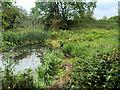 SE3900 : Elsecar Branch Canal between Elscar and Hemingfield by David Dixon