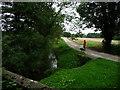 SE4172 : Walking the dog along the bridleway at Bat Bridge by Christine Johnstone
