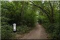 TQ1860 : Woodcock Corner by Ian Capper
