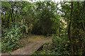 TQ1760 : Footpath to Rushett Farm by Ian Capper