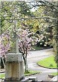 SW8032 : Memorial, Kimberley Park by N Chadwick