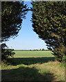 TL5849 : An East Cambridgeshire landscape by John Sutton
