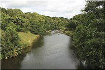 NU2304 : The River Coquet, west of Warkworth by Graham Robson