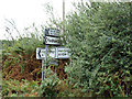 TL9326 : Roadsigns on the A1124 Halstead Road by Adrian Cable