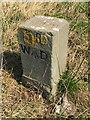ST2164 : WD boundary marker stone by Alan Hughes