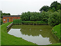 SP6989 : Sidepond by Foxton Locks in Leicestershire by Roger  Kidd