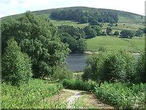 SK1789 : Track down to Ladybower Reservoir near Fairholmes by JThomas
