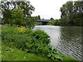 TQ0567 : The Thames Path National Trail near the M3 crossing by Dave Kelly