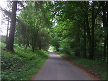 SK1789 : Track (bridleway) near Fairholmes by JThomas