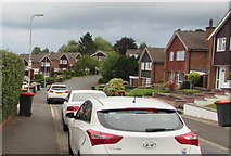 ST3091 : White and orange, Anderson Place, Malpas, Newport by Jaggery