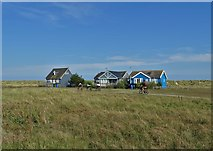 TM5075 : Houses on The Denes south of Southwold by Neil Theasby