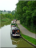 SP6989 : Grand Union Canal north of Foxton Junction, Leicestershire by Roger  Kidd