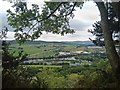 NO1222 : View from lower slopes of  Kinnoull Hill, Perth by Claire Pegrum