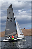 NU0052 : Sailing on the River Tweed Estuary by Walter Baxter