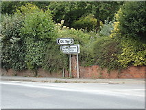 TL8928 : Roadsigns on the A1124 Colchester Road by Adrian Cable