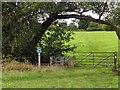 SJ8476 : Peak & Northern Footpaths Society sign #211 by Graham Hogg