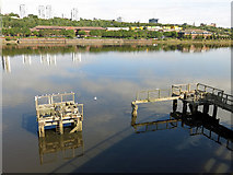 NZ2362 : Derelict landing stage and the River Tyne opposite Dunston Staiths by Mike Quinn
