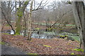 TQ4399 : Small pond, Epping Forest by N Chadwick