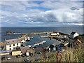 NT9167 : Looking down on St Abbs Harbour : Week 37