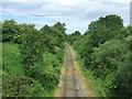 NZ1829 : Weardale Railway, High Escomb by JThomas