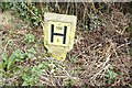 SJ5742 : Fire Hydrant sign in the verge by Bob Harvey
