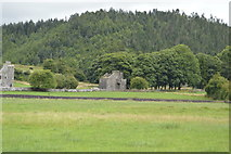 N5170 : Part of Fore Abbey by N Chadwick
