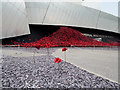 SJ8097 : Poppies at Imperial War Museum North by David Dixon